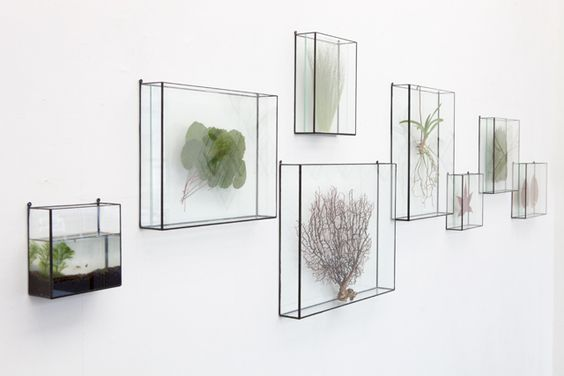 Wall Mounted Glass Vase For Flowers