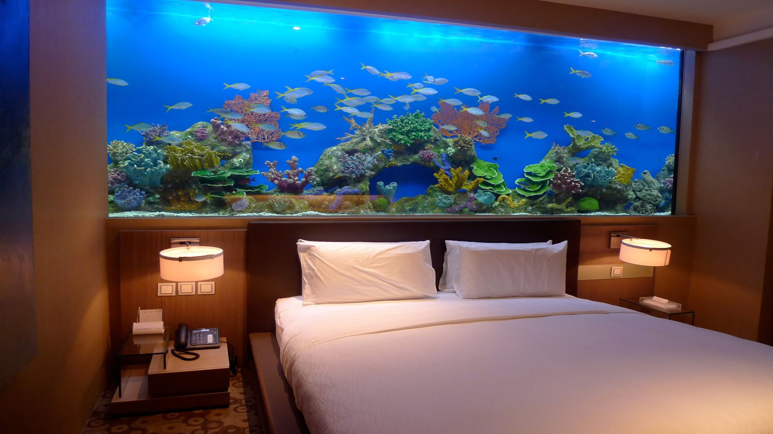 Amazing Wall Aquariums On Bedroom Wall Design Ideas