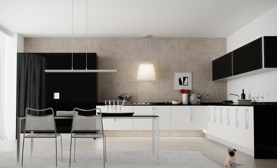 Ordinaire Functional Black And White Kitchen Design Ideas