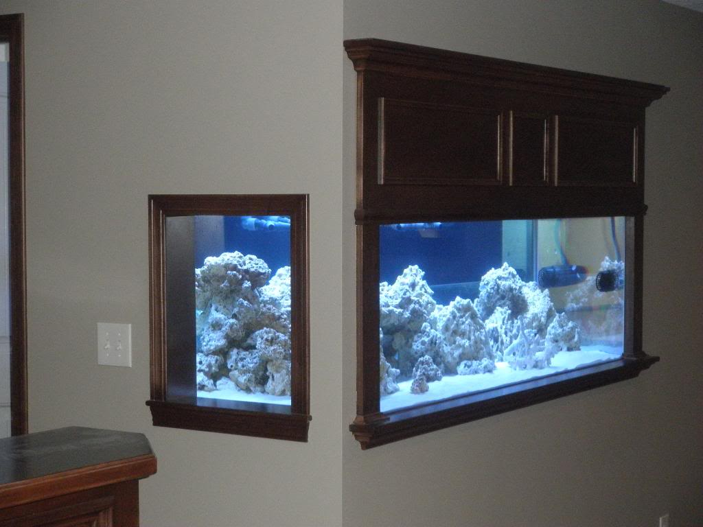 Aquarium in wall home design ideas pictures remodel for Wall fish tanks