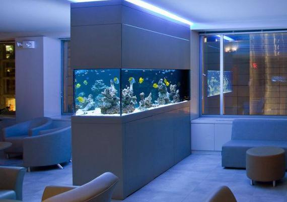Wall-Mounted Aquarium For Your Dream House