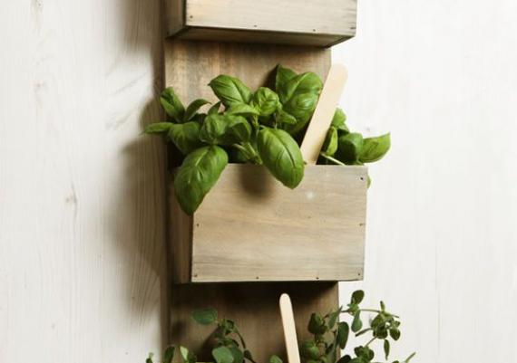 Wood Wall-mounted Rack For Kitchen Herbs