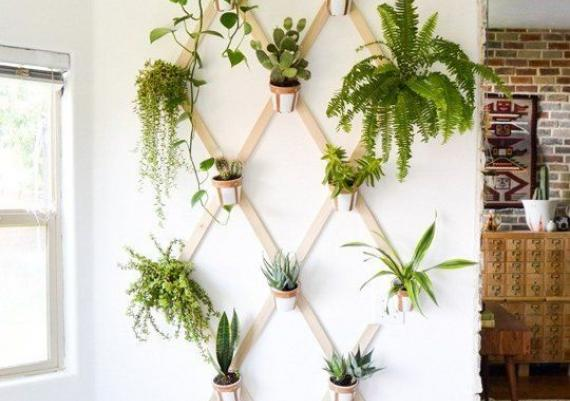 Wall-mounted Rack For Indoor Flowers