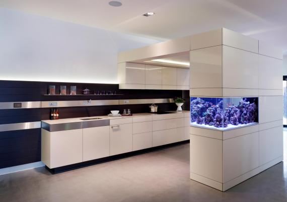 Creative Aquarium Mounted In Wall Idea For Your Home