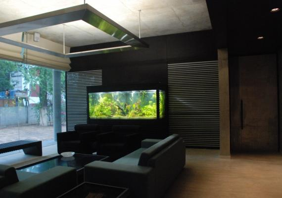 Modern Living Room Design Wth Elegant Wall Aquarium