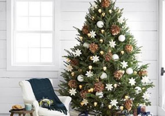 Stunning New Ways to Decorate Your Christmas Tree