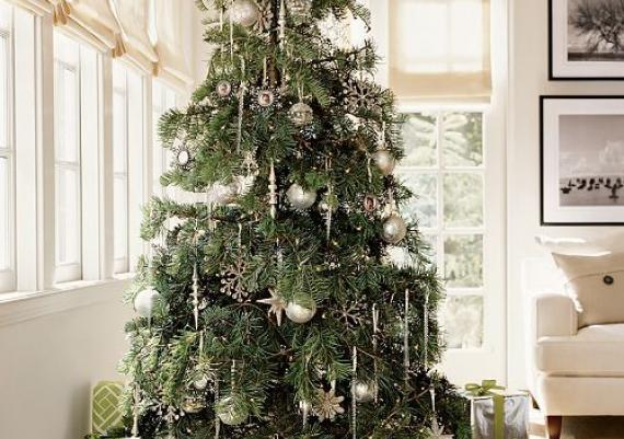 Wonderful Green Christmas Tree Against The White Background