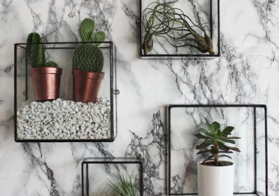 Unique Wall-mounted Racks For Flowers