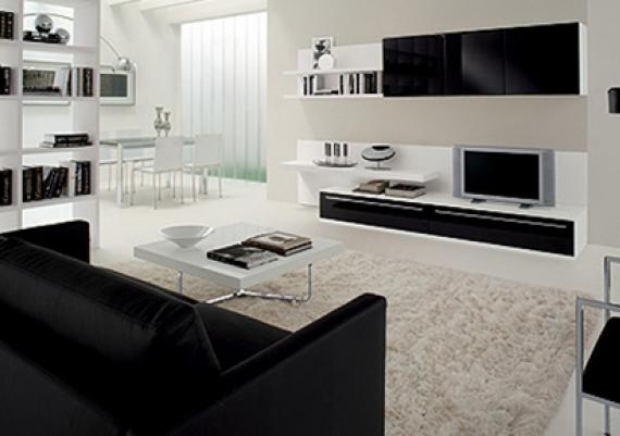 Decorating Ideas Using Black and White for a Living Room